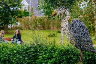 Dún na Sí - Heritage and Amenity Park - Garden 1